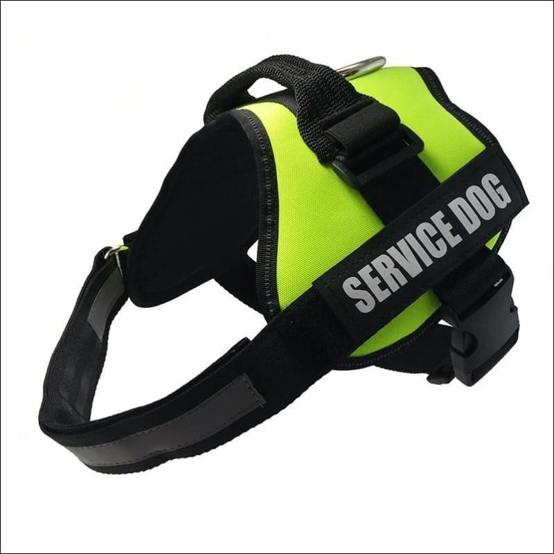 All-In-One No Pull Dog Harness - green / L - Harnesses