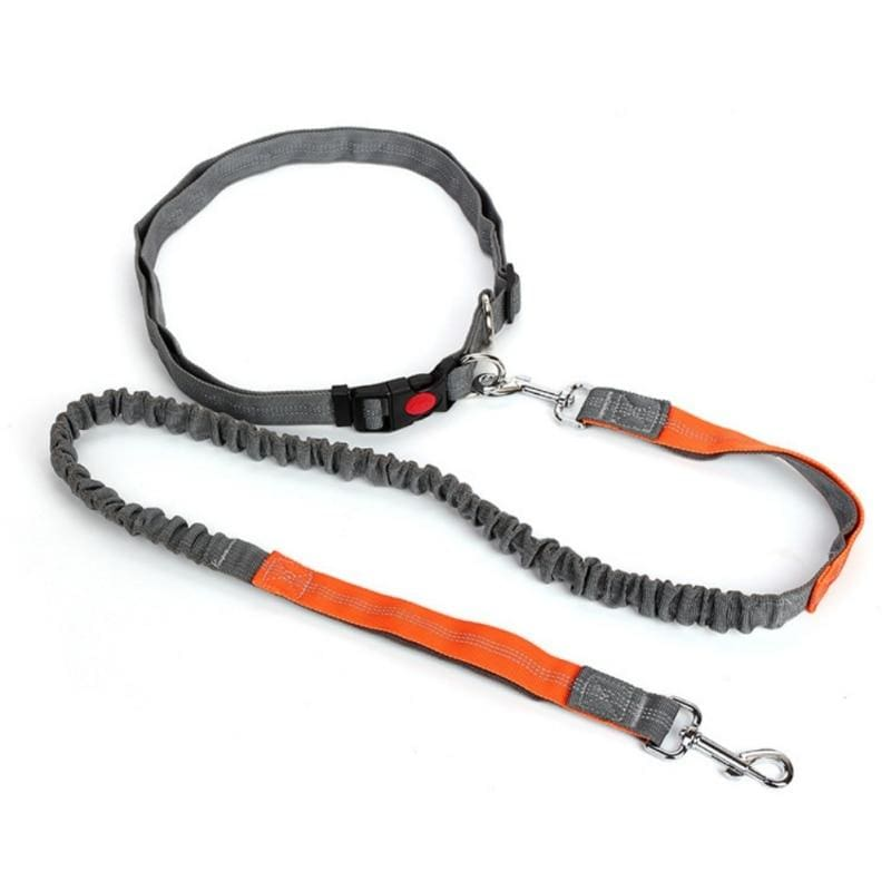 Hands-Free Retractable Leash - Leashes