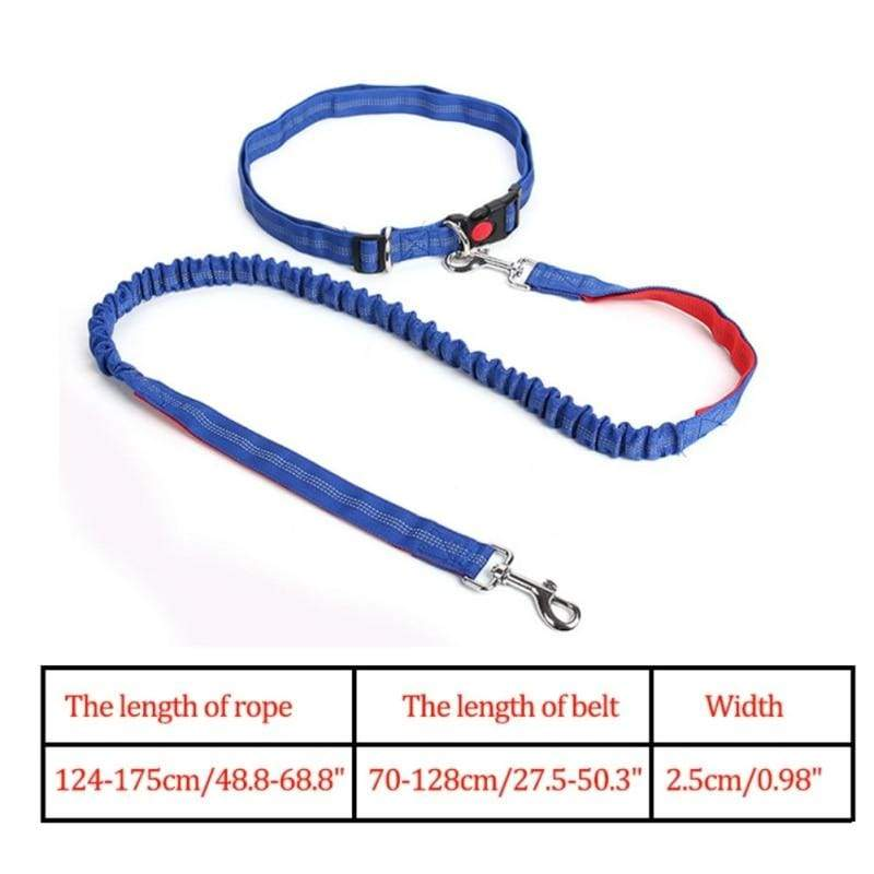 Hands-Free Retractable Leash - LR / M - Leashes
