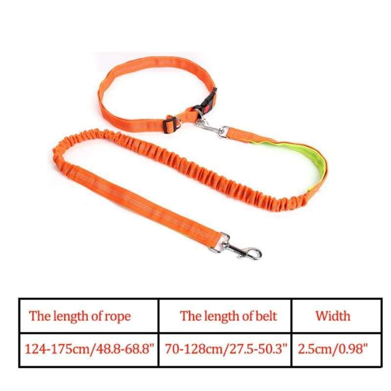 Hands-Free Retractable Leash - OG / M - Leashes